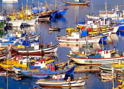 Day tour Azeitao Sesimbra Arrabida Palmela Setubal