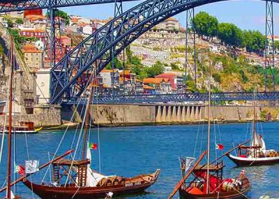 Day tour of Porto