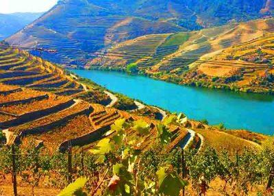 Valle del Duero con cata de vinos – 8h